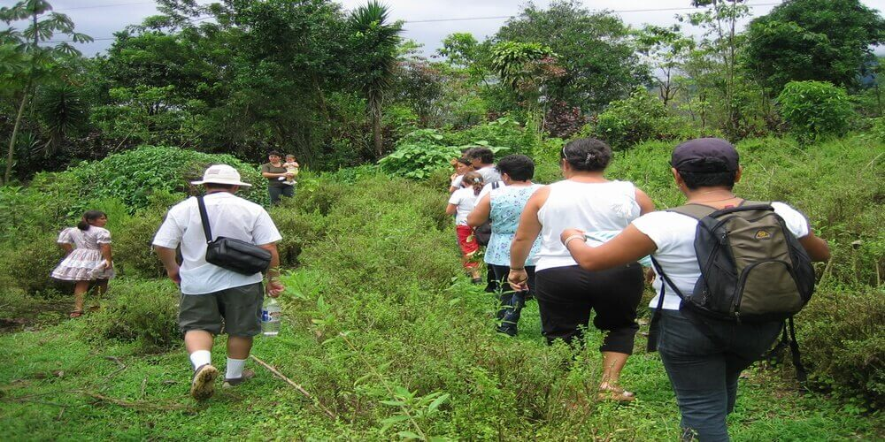 Tour to Medicinal Plants Farm